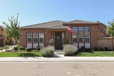 Patterson Single Family Home For Sale: 9437 Vintner Circle