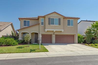 Roseville Single Family Home For Sale: 1225 Billington Lane