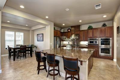 El Dorado Hills Single Family Home For Sale: 1174 Bevinger Drive
