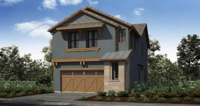 Sacramento Single Family Home For Sale: 8346 Lemberger