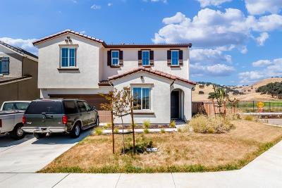 Patterson Single Family Home For Sale: 21051 Pinot Noir Drive