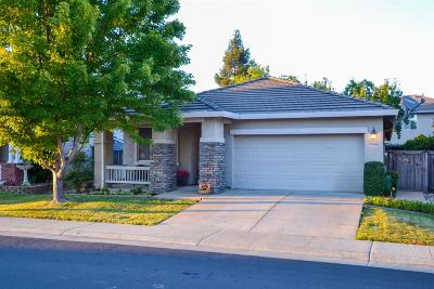 Elk Grove Single Family Home For Sale: 9443 Oakley Way