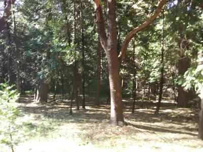 Pioneer Residential Lots & Land For Sale: 23990 Carson Drive