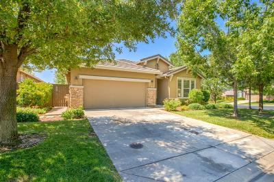 El Dorado Hills Single Family Home For Sale: 600 Mazza Court
