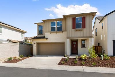 Sacramento County Single Family Home For Sale: 42 Seasmoke Place #Lot11