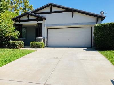 Tracy Single Family Home For Sale: 4652 Morning Brook Lane