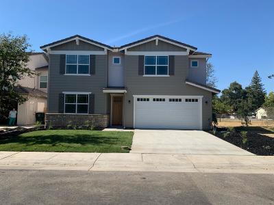 Rocklin Single Family Home For Sale: 5450 2nd Street