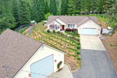 El Dorado County Single Family Home For Sale: 6250 Sly Park Road