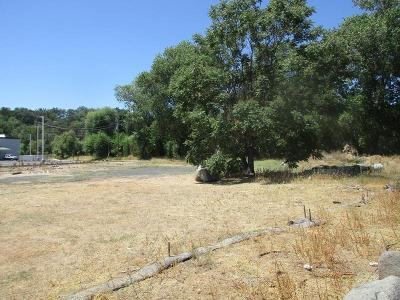 Commercial Lots & Land For Sale: 18372 State Hwy 108