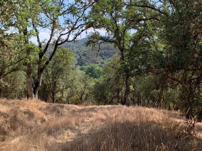 El Dorado Residential Lots & Land For Sale: State Hwy 49