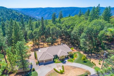 Placer County Single Family Home For Sale: 19635 Eagle Ridge Road