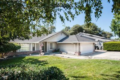 Granite Bay Single Family Home For Sale: 8610 Christy Lane