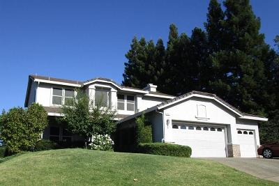 Rocklin Single Family Home For Sale: 5901 Percheron Ct.