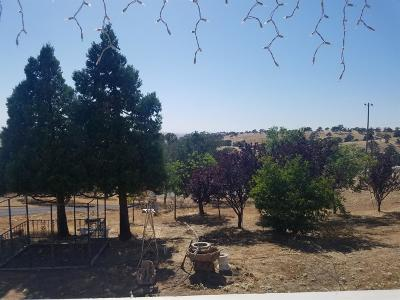 Mariposa County Single Family Home For Sale: 9930 Hernandez Drive