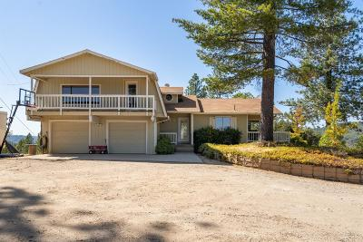 Grass Valley Single Family Home For Sale: 18070 Eagle Nest Road