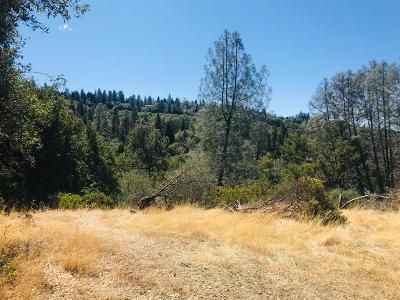 Nevada County Residential Lots & Land For Sale: 15805 Shannon Way