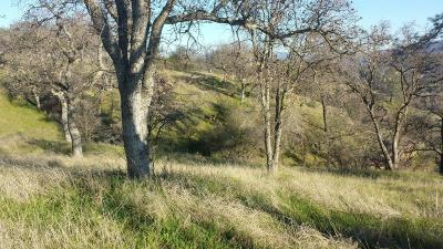 Valley Springs Residential Lots & Land For Sale: Crestview Drive