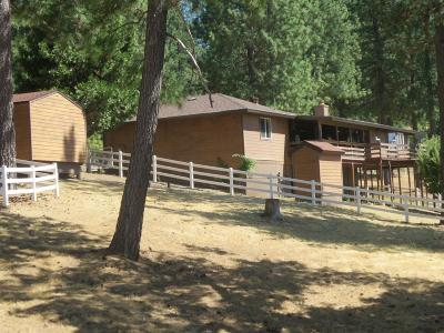 El Dorado County Single Family Home For Sale: 5801 Stephanie Court