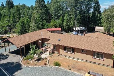Nevada City, North San Juan Single Family Home For Sale: 13706 Banner Lava Cap
