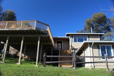 Groveland Single Family Home For Sale: 20980 Hemlock Street
