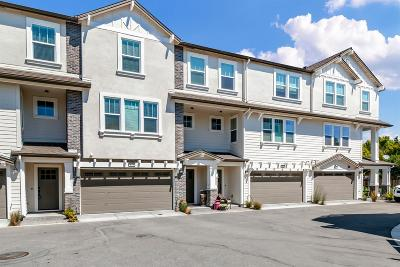 Livermore Condo For Sale: 173 Ganesha Common