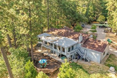 Grass Valley Single Family Home For Sale: 11937 Paradise