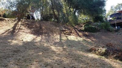 El Dorado Hills Residential Lots & Land For Sale: 1597 Bonita Court