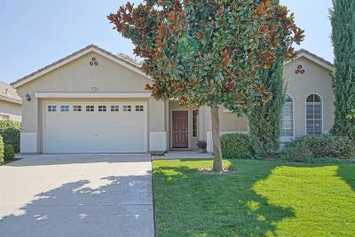 El Dorado Hills Single Family Home For Sale: 4012 Treeline Way