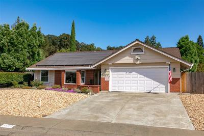 Rocklin Single Family Home For Sale: 3685 Mountain View Dr