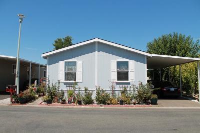 Sacramento Mobile/Manufactured For Sale: 7313 Topanga Lane #34
