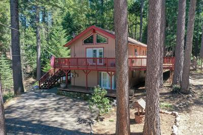 Bangor, Berry Creek, Chico, Clipper Mills, Gridley, Oroville Single Family Home For Sale: 11311 Winding Way