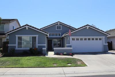 Elk Grove Single Family Home For Sale: 10064 Oglethorpe Way