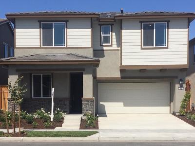 Mountain House Single Family Home For Sale: 357 East Terra Mia Avenue