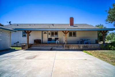 Tracy Single Family Home For Sale: 32568 S Bird