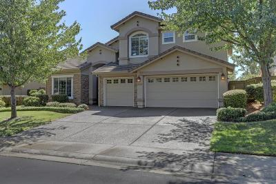 El Dorado Hills Single Family Home For Sale: 3920 Ironwood Drive