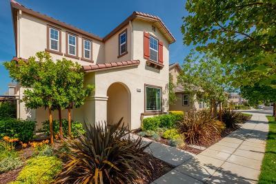 Mountain House Single Family Home For Sale: 984 South Walcott Avenue