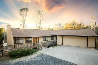 Grass Valley Single Family Home For Sale: 13668 Auburn Rd.