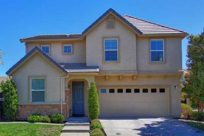 Sacramento Single Family Home For Sale: 360 Picasso Circle
