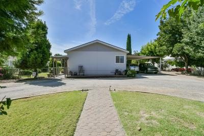 Bangor, Berry Creek, Chico, Clipper Mills, Gridley, Oroville Single Family Home For Sale: 32 Sheldon Avenue