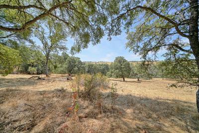 El Dorado Residential Lots & Land For Sale: Sierra Real 11 Acres
