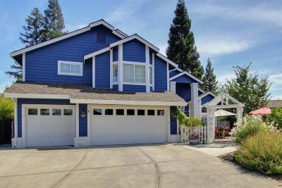 Fair Oaks Single Family Home For Sale: 9023 Propeller Court