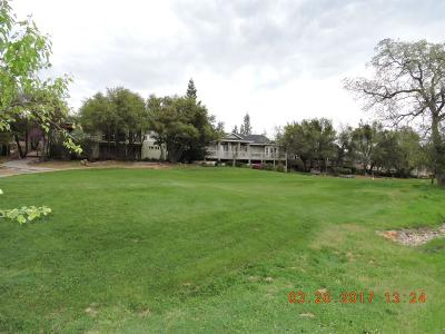 Angels Camp Residential Lots & Land For Sale: 272 Catalpa Lane