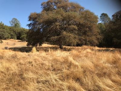 Grass Valley Residential Lots & Land For Sale: 22828 Cameo Drive