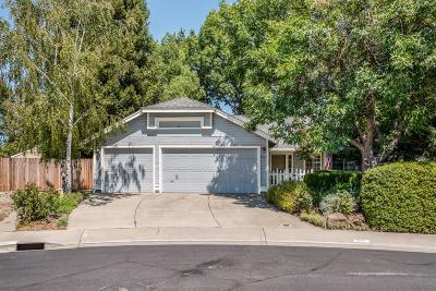Elk Grove Single Family Home For Sale: 6117 Alpinespring Way