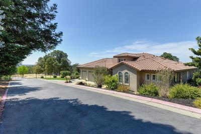 Placer County Single Family Home For Sale: 3941 Black Oak Court