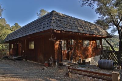 El Dorado County Single Family Home For Sale: 5921 Bayne Road