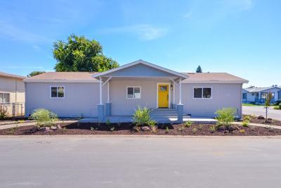 Lodi Single Family Home For Sale: 6 Little Honker