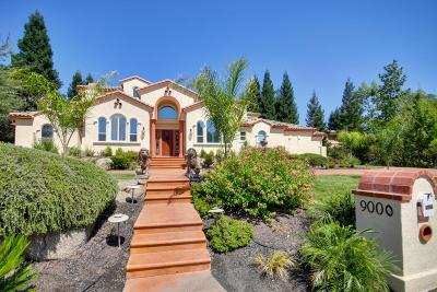 Placer County Single Family Home For Sale: 9000 Los Lagos Circle