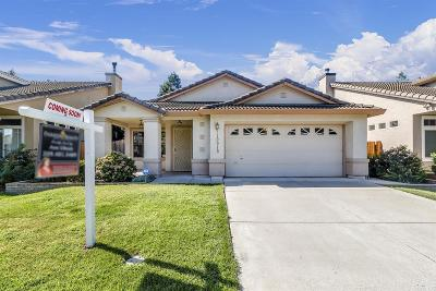 Elk Grove Single Family Home For Sale: 10019 Teddington Way