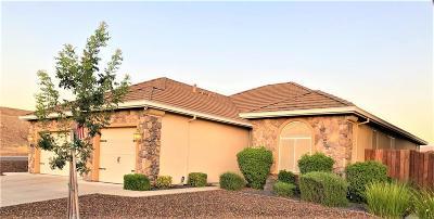 Valley Springs Single Family Home For Sale: 208 Bullion Hill